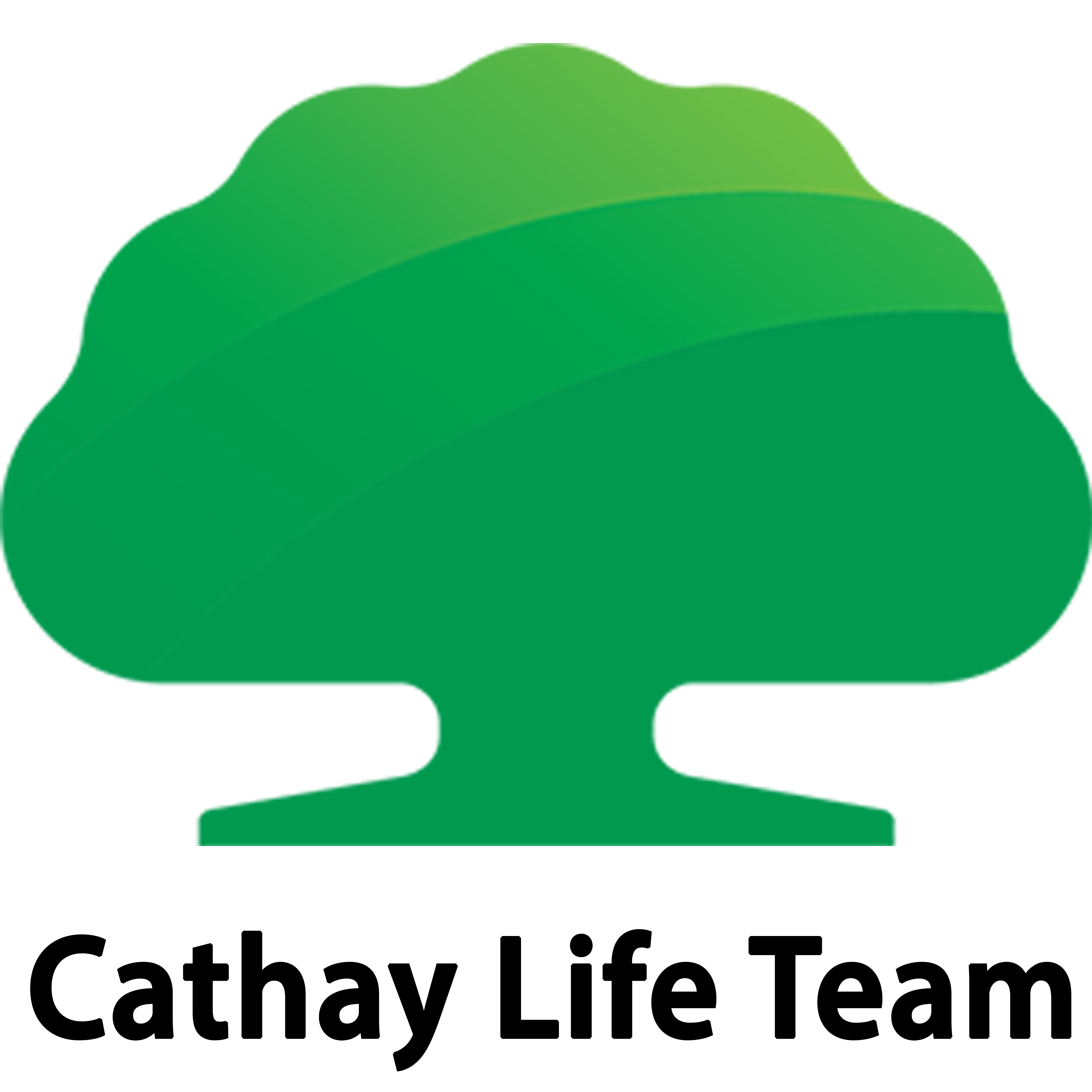 Cathay Life Team